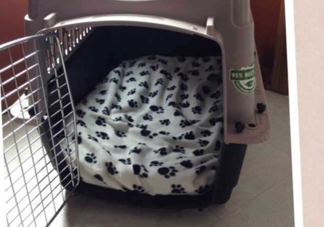 DIY Puppy Crate Pad for Travel Kennel