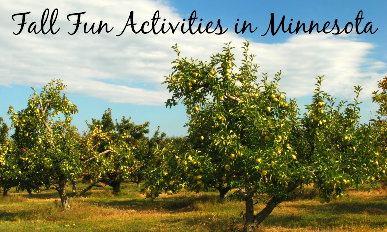 Fun Fall things to do in Minnesota