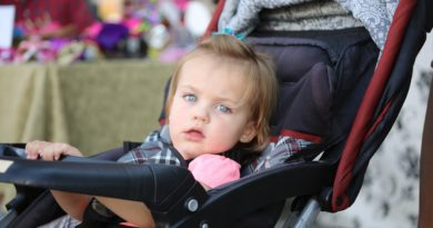 Top 9 strollers for small vehicles