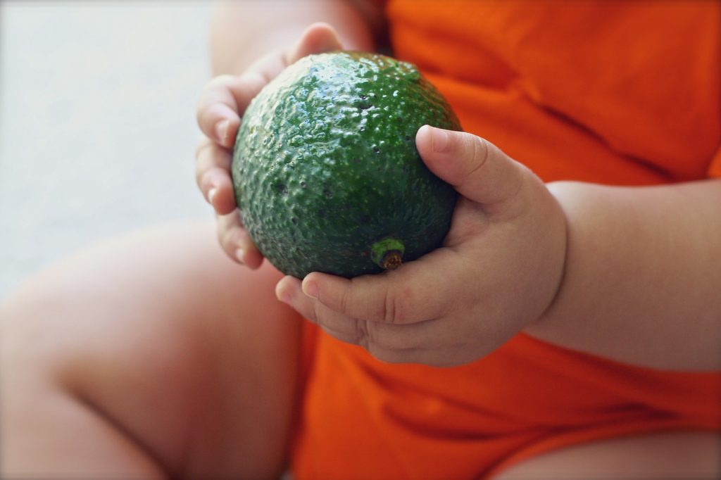 How To Freeze Avocado For Baby Food