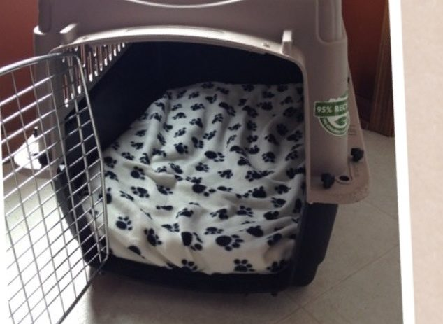 diy puppy crate pad for travel dog kennels real housewives of